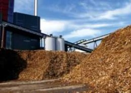 What are the applications of Industrial Biomass Boilers and how they work?