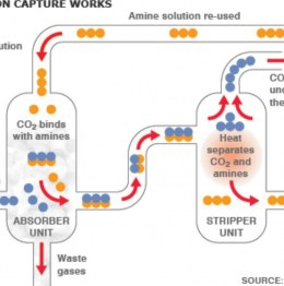 How does carbon capture works?