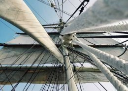 What are the developments in the self-sailing ships industry?