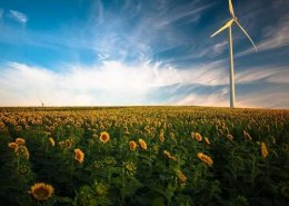 What are the leading trends in the renewable energy market in 2020?